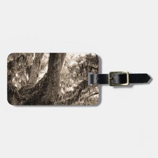Spanish Moss Adorned Live Oak In Sepia Tones Bag Tag
