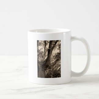 Spanish Moss Adorned Live Oak In Sepia Tones Coffee Mug