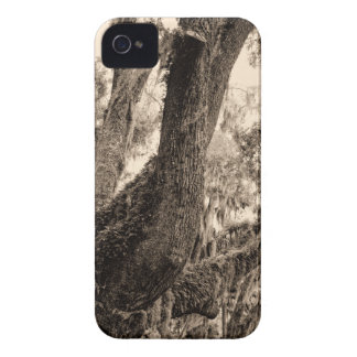Spanish Moss Adorned Live Oak In Sepia Tones iPhone 4 Covers