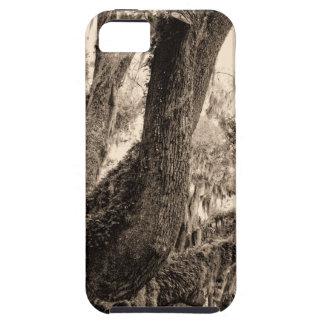 Spanish Moss Adorned Live Oak In Sepia Tones iPhone SE/5/5s Case