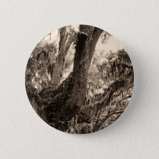 Spanish Moss Adorned Live Oak In Sepia Tones Pinback Button