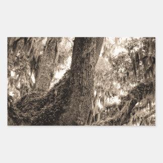 Spanish Moss Adorned Live Oak In Sepia Tones Rectangular Sticker