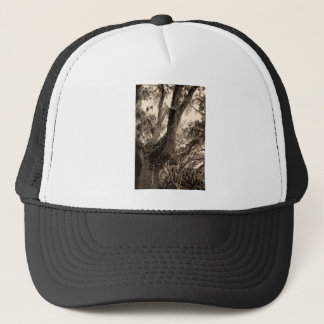 Spanish Moss Adorned Live Oak In Sepia Tones Trucker Hat