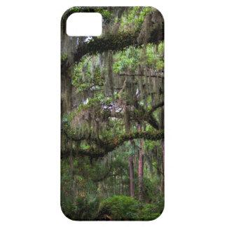 Spanish Moss Adorned Live Oak iPhone SE/5/5s Case