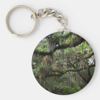 Spanish Moss Adorned Live Oak Keychain