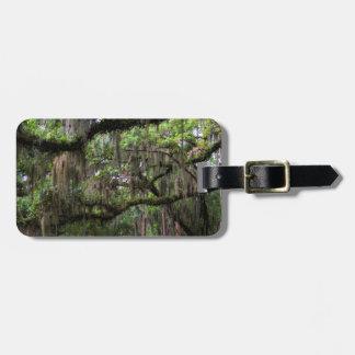 Spanish Moss Adorned Live Oak Luggage Tag