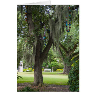 Spanish Moss and Beads Greeting Card
