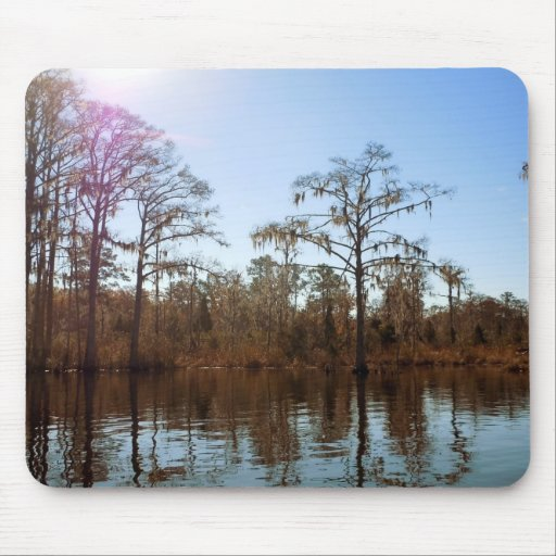 Spanish Moss Reflections Mouse Pad
