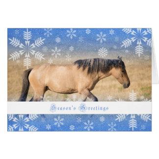 Spanish Mustang - 5x7 Holiday Card