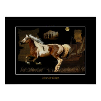 Spanish Mustang Conquistadore Horse-lover Print