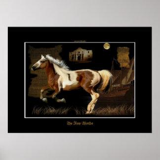 Spanish Mustang New Worlde Horse-lover Print