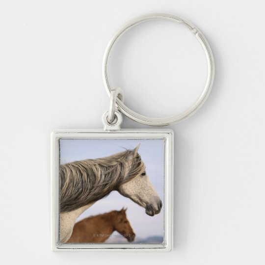 Spanish Mustangs Keychain