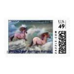 Spanish Mustangs & Surf US Postage Stamp
