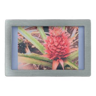 Spanish Pineapple Belt Buckle