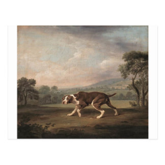 Spanish Pointer by George Stubbs Postcard