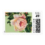 Spanish Rose B by Ceci New York Postage Stamp