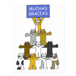 Spanish Thank you cats Muchas Gracias Postcard