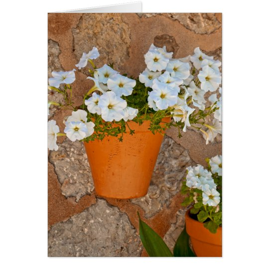 Spanish Wall Card