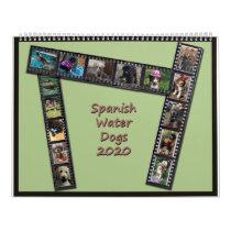 Spanish Water Dog Calendar 2020