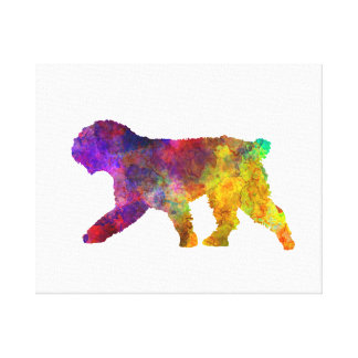Spanish Water Dog in watercolor Canvas Print