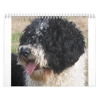 Spanish Water Dog.png Calendar