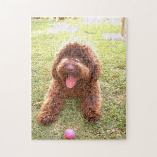 spanish water dog w toy.png jigsaw puzzle