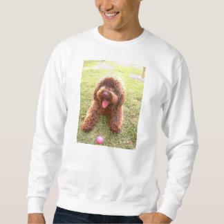 spanish water dog w toy.png sweatshirt