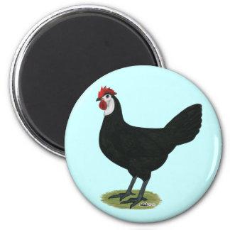 Spanish:  White-faced Hen Fridge Magnets