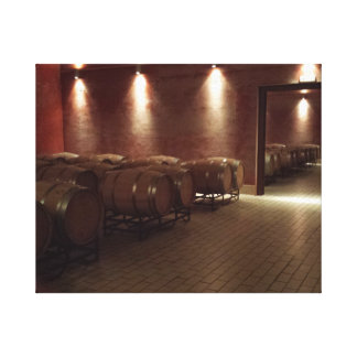 Spanish Winery Canvas Print