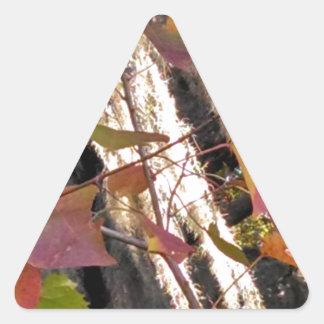 Spanishmosssweetgumwindblowing.jpg Triangle Sticker