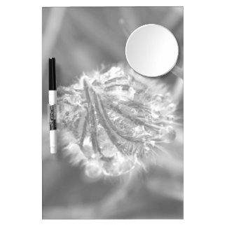 Sparkling Crocus in Black and White Dry Erase Board With Mirror
