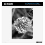 Sparkling Crocus in Black and White Skins For The Sony Reader