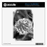 Sparkling Crocus in Black and White Skin For iPhone 2G