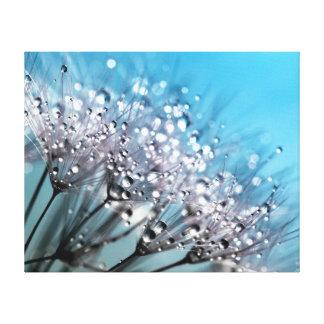 Sparkling Dew Dandelion Sky Blue Background Canvas Print