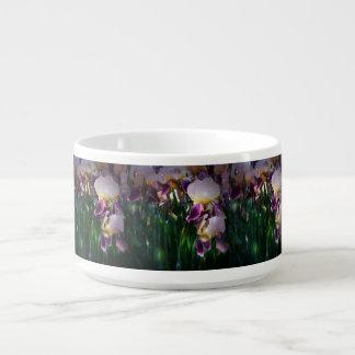 Sparkling Irises Chili Bowl