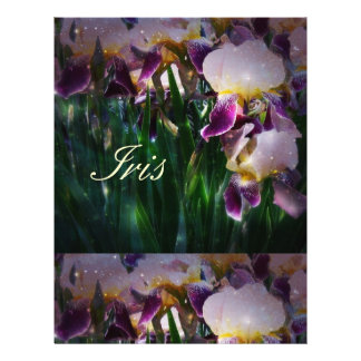 Sparkling Irises Flyer
