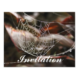 Sparkling Spider Net Personalized Invites