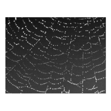 Halloween Themed Sparkling Spiderweb Postcard
