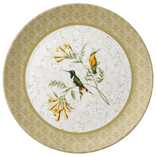 Sparkling Tailed Hummingbird Porcelain Plate