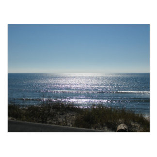 Sparkling water with sea oats postcard