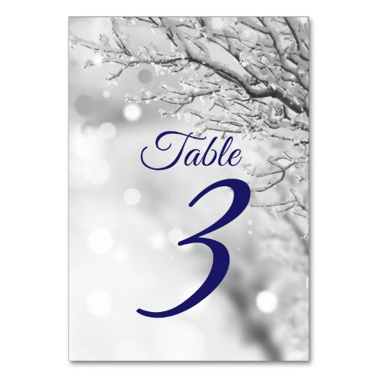 Sparkling Winter Snow & Ice Wedding Table Number