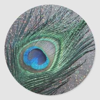 Sparkly Black Peacock Feather Still Life Classic Round Sticker