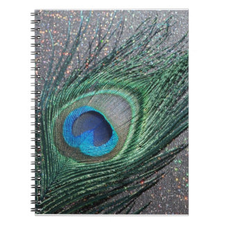Sparkly Black Peacock Feather Still Life Notebook