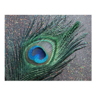 Sparkly Black Peacock Feather Still Life Postcard