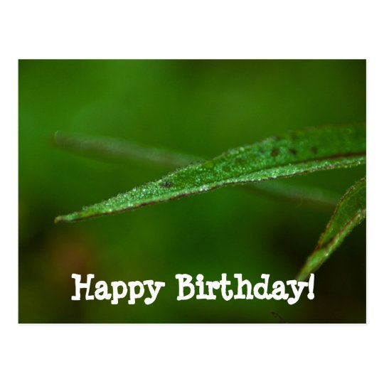 Sparkly Green Leaves; Happy Birthday Postcard