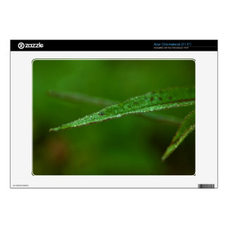 Sparkly Green Leaves Acer Chromebook Decals