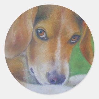Sparky Dog:  Eyes Classic Round Sticker
