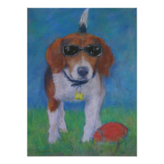 Sparky Dog:  Looking Cool poster