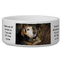 Sparky the Beagle Bowl