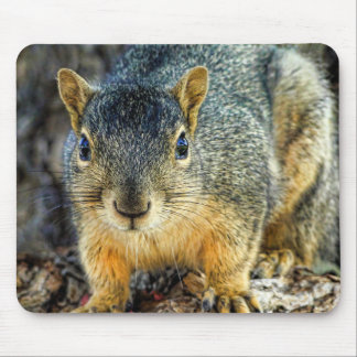 Sparky the Squirrel Mousepad